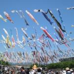 関西で一番すごいと評判の大阪高槻の「こいのぼりフェスタ1000」に行ってきたのでレビューするよ。